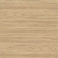BLAT R3220 / R37009 SWISS ELM #38MM 4100x600